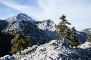 ... красива планина с гори и клисури, и гледката от върха е зашеметяваща ...
