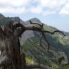 Планината Ypsarion ...