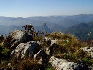Дзиглина ливада ... стръмното изкачване е истинско предизвикателство ...