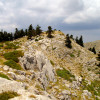 На височина 1600-2250м. в областта Fterolakka ...