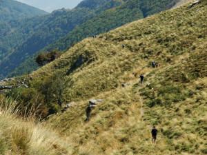 ... по криволичещ планински път нагоре в планината ...