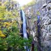 Водопада Ливадитис, падат отвесно със страшен грохот обливайки обилно растителността в пукнатините на скалите.
